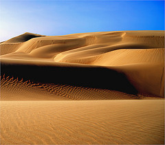 vene-desert