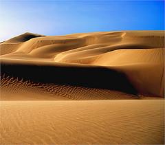 vene-desert